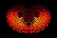 simetriks1